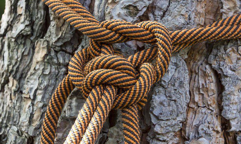 Le condizioni della corda per il tree climbing sono fondamentali