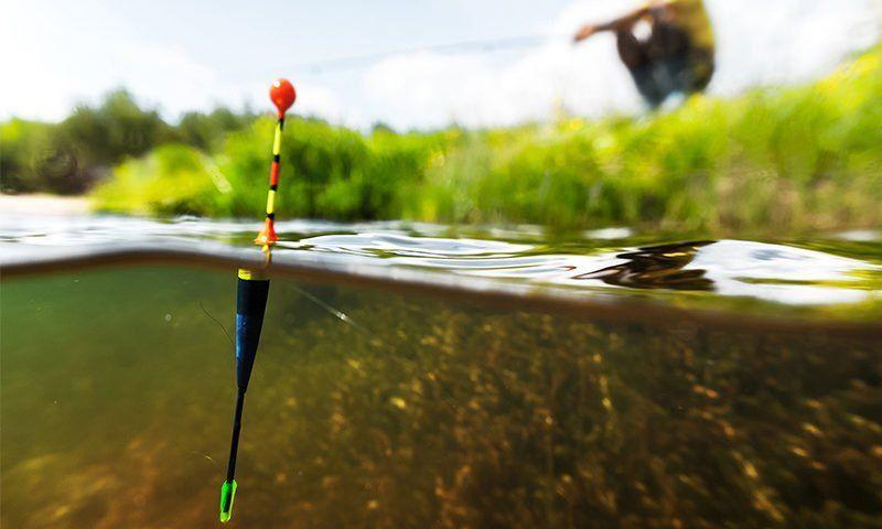 lenza pesca sportiva